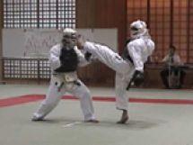 愛媛県日本拳法連盟